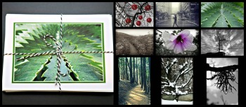 rss-winter-holiday-cards